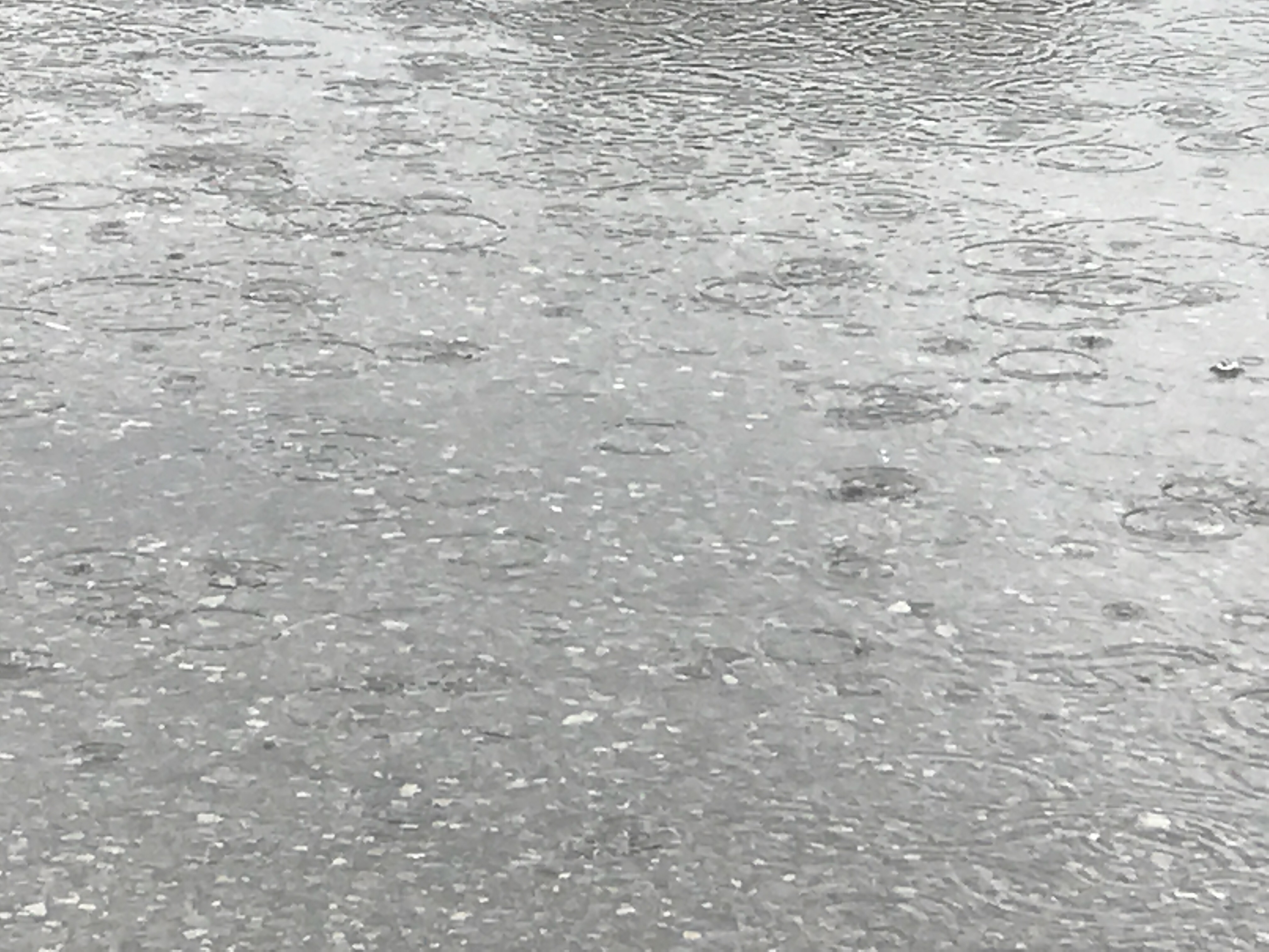 Roller skating rink etobicoke - It S Pouring So Tonight S Practice Is Cancelled